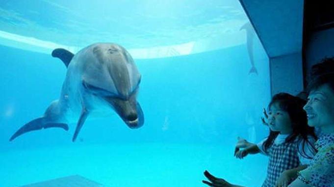 ◆2食付◆当館から徒歩2分!九十九島水族館「海きらら」入場券付♪夕食は本格地中海料理「サンセット」
