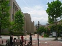 周辺の大学