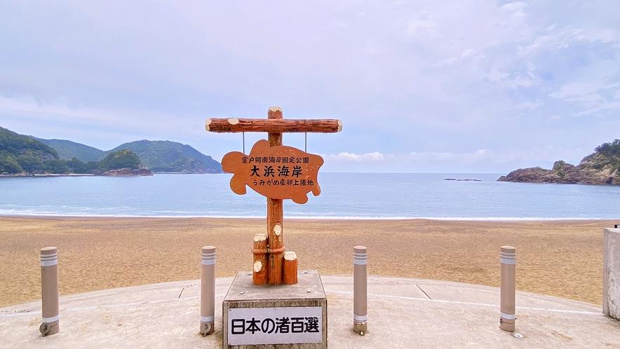 ウミガメ産卵で有名な大浜海岸