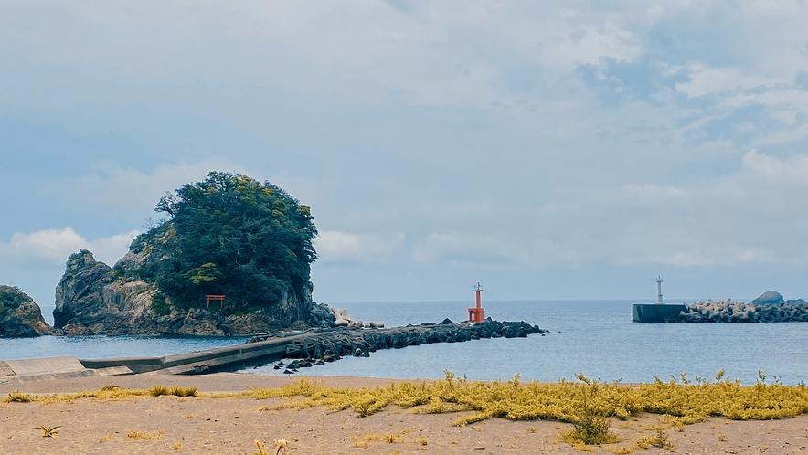 ウミガメの産卵地 大浜海岸