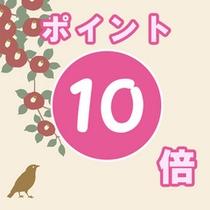 ≪ポイント10倍プラン≫