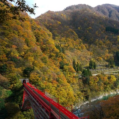 黒部峡谷の紅葉はモザイク柄が特徴で 毎年多くのお客様を魅了している富山県でも有数な紅葉スポットです