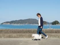鳥羽湾を見ながらお散歩♪