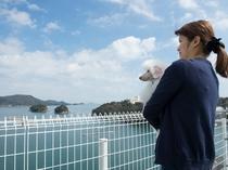 屋上から見える鳥羽湾の風景をお楽しみください