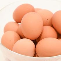 *【朝食バイキング】ブランド卵「瀬戸の彩り」を朝から贅沢に。