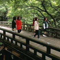 【こおろぎ橋】徒歩約8分。風雅な総ひのき造りの橋で、四季を通じて山中温泉の代表的な景勝地です。