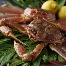 【冬季限定:活蟹】北陸の秋から冬は美味しい蟹抜きでは何も語れません。甘くプリっとした味が特徴です。