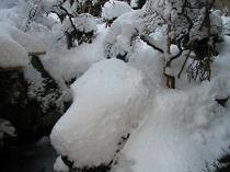 雪景色ー庭