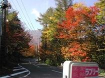 宿周辺の紅葉