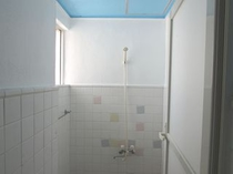 シャワーの一例