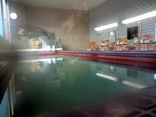 [最安値]癒しの天然温泉!●愛煙家+温泉好き大歓迎【素泊まりプラン】
