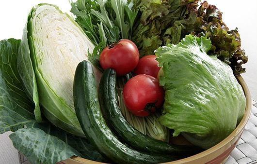 鮮度が違う。産地から毎日届く新鮮野菜