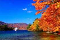 紅葉の十和田湖と遊覧船 ※カスタサイズ