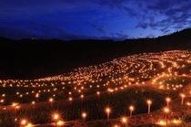 大山千枚田(冬の夜祭り)