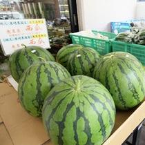 野菜3(すいか)