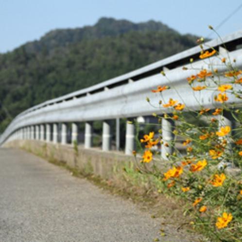 景色(花)