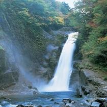 日本三名瀑のひとつ。水量が多く迫力満点!【秋保大滝】