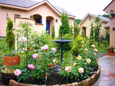 薔薇の咲き乱れる中庭