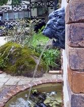 ライオン泉