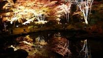 円通院の夜間紅葉ライトアップ