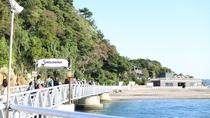 夏にはBBQ、魚釣り、ハイキング、磯遊び、海水浴など沢山の観光客でにぎわいます