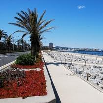 東京湾沿いの美しい馬堀海岸遊歩道