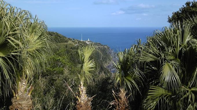 【秋冬旅セール】八丈島の自然に触れ合う♪おトクに自由な島旅★素泊まりプラン