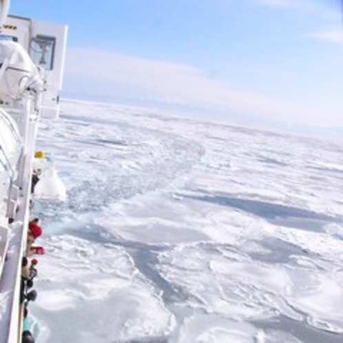 【オーロラ号から見る流氷】