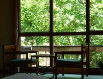 お部屋からの景色 新緑の眺め