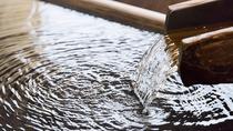 *【貸切露天風呂】湧き出る塩湯の恵みを贅沢にかけ流し(予約制・有料)