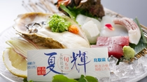 *【岩牡蠣】春から初夏の山陰の味覚!ぷりっと肉厚な牡蠣をぜひご賞味ください。