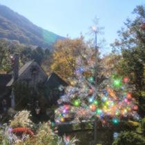 箱根ガラスの森美術館〜冬のクリスマスツリー