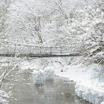 ◆雪のかずら橋