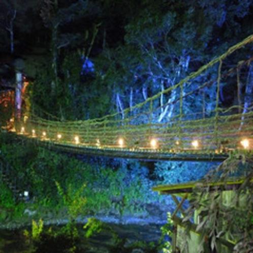 かずら橋の夜景