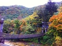 紅葉とかずら橋
