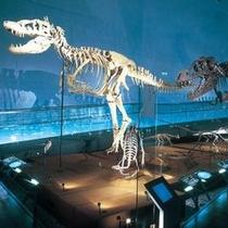 【恐竜博物館】 ※恐竜王国ふくいを象徴する「福井県恐竜博物館」