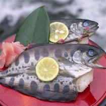 あめご寿司