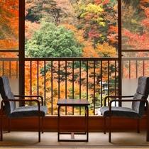 【秋/紅葉】新館客室からの紅葉風景(一例)