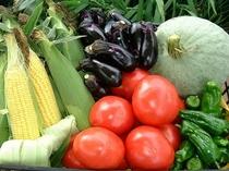 高原夏野菜