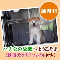 秋田犬クリアファイル付きプラン♪