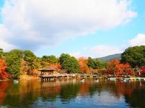 秋の浮見堂