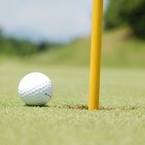 ゴルフ利用に是非ルートイン佐野藤岡インターをお願い致します。
