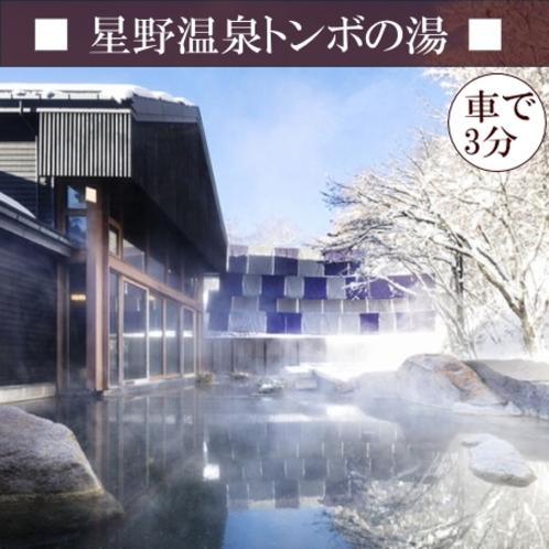 【星野温泉トンボの湯】 雪が降るととっても素敵な雪見風呂♪深くてゆったりとした内風呂もおすすめ☆彡