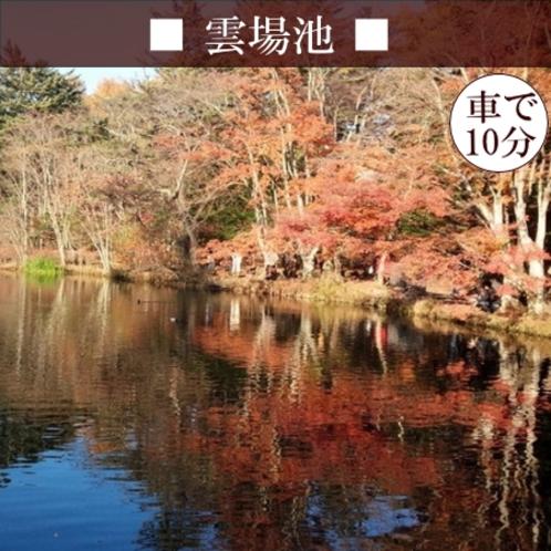 【雲場池】 水面にもきれいな紅葉が映る、とっても素敵なおすすめスポット!車15分