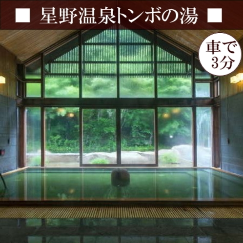 【星野温泉トンボの湯】 自然を満喫できる露天風呂と、肩までゆったりとつかれる深めの内風呂♪