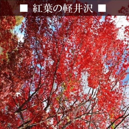 【紅葉】 星野エリアの紅葉。軽井沢の紅葉も素敵です!車3分