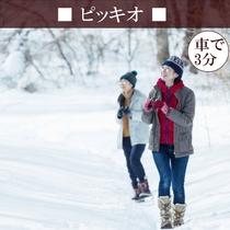 【ピッキオ】 冬は渡り鳥が見られ、葉っぱも少なく小鳥の姿がよく見える野鳥観察に適した季節♪(車3分)