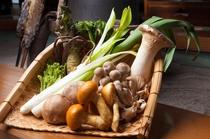地場産 キノコ 野菜