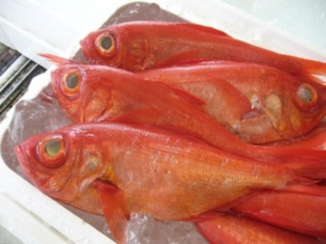 魚市場 金目鯛