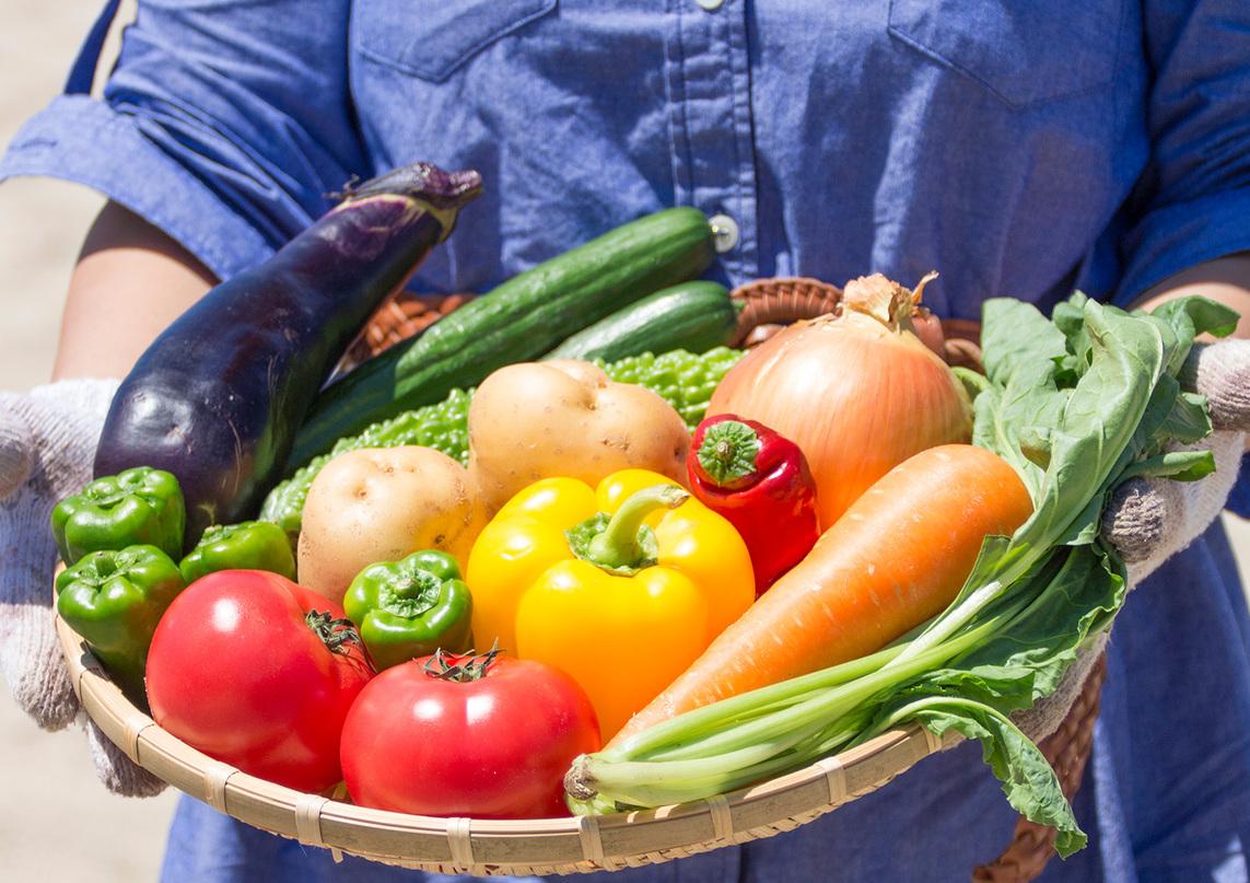 地元産の野菜。但馬の肥沃な大地で育てられる里山の幸。